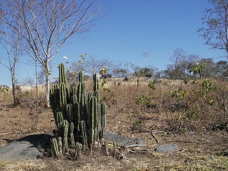 Área de Proteção Ambiental Carste Lagoa Santa | Minas Gerais