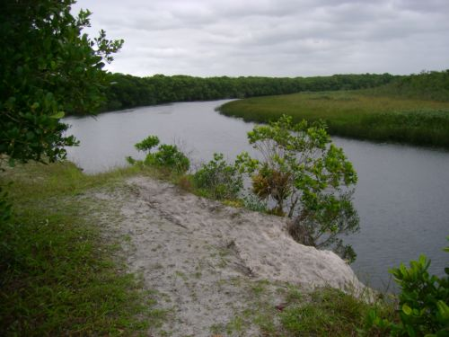 Estação Ecológica de Guaraguaçu | PR