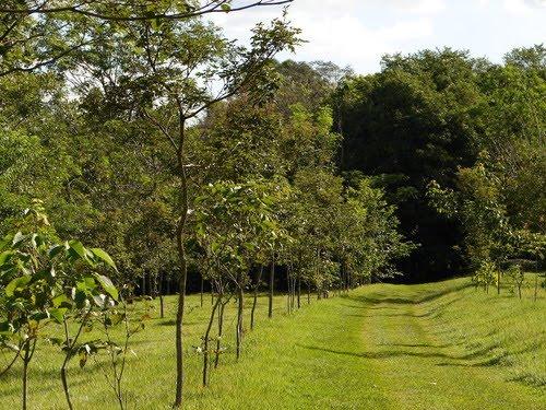 Parque Estadual de Amaporã   Paraná