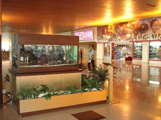 feng shui wonders feng shui and aquarium. Black Bedroom Furniture Sets. Home Design Ideas