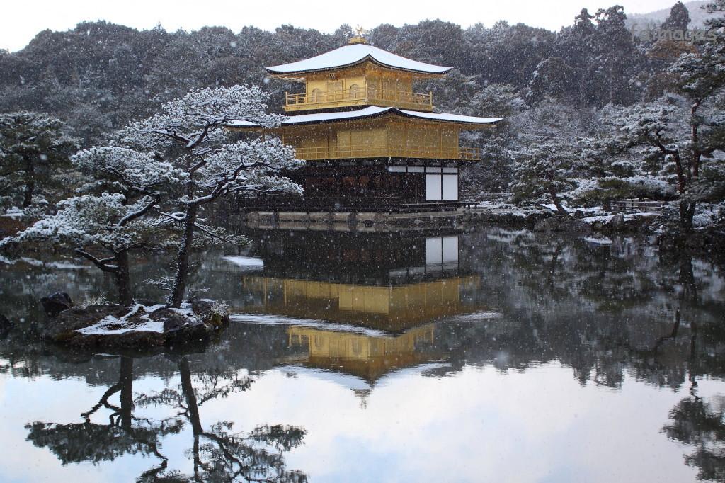 kyoto images kinkaku ji golden pavillon winter. Black Bedroom Furniture Sets. Home Design Ideas