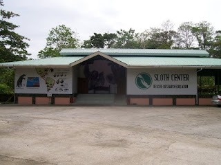 Animal Rescue Site - The Only Sloth Rescue Center in the World