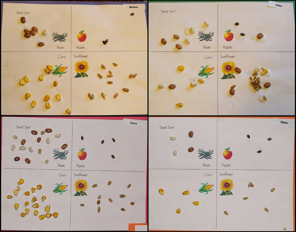 Seed Sorting Share Amp Remember