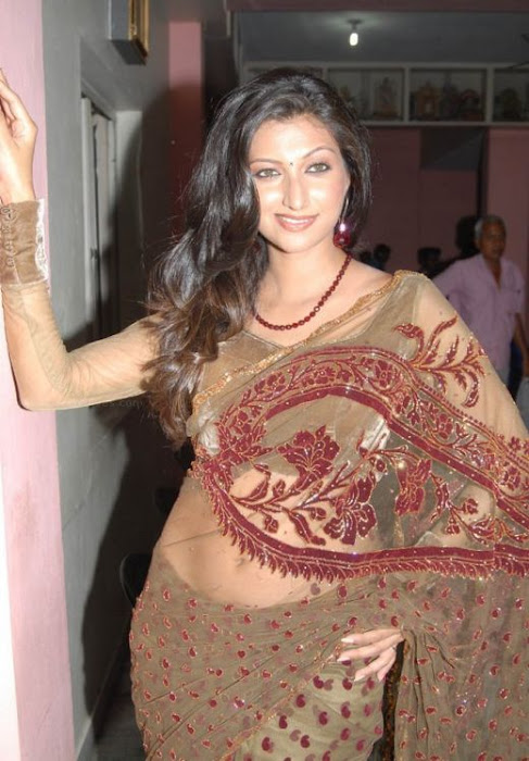 hamsa nandini glamourous in saree hot images