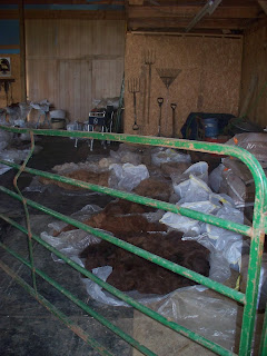 Shearing Day Fiber Crop