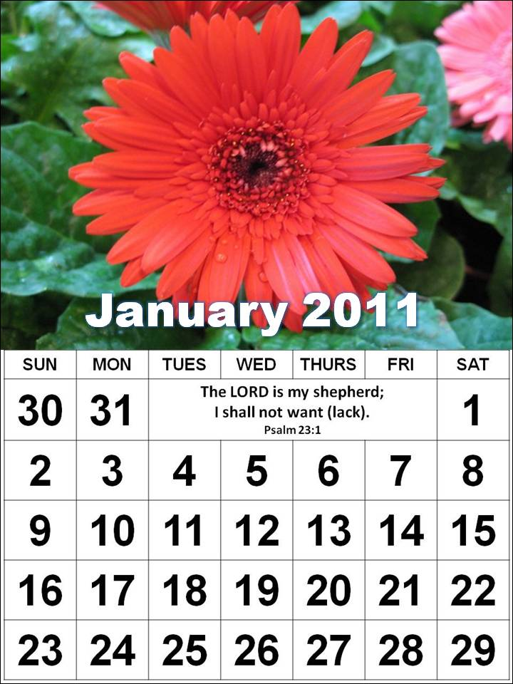 Printable medication calendar 9jasports