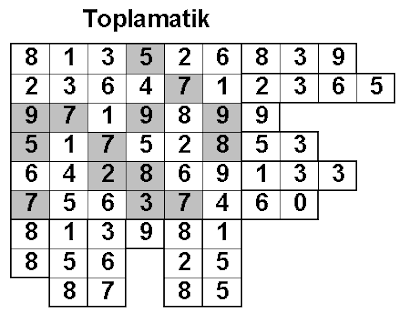 Toplamatik: T2 Solution-Fun With Puzzles