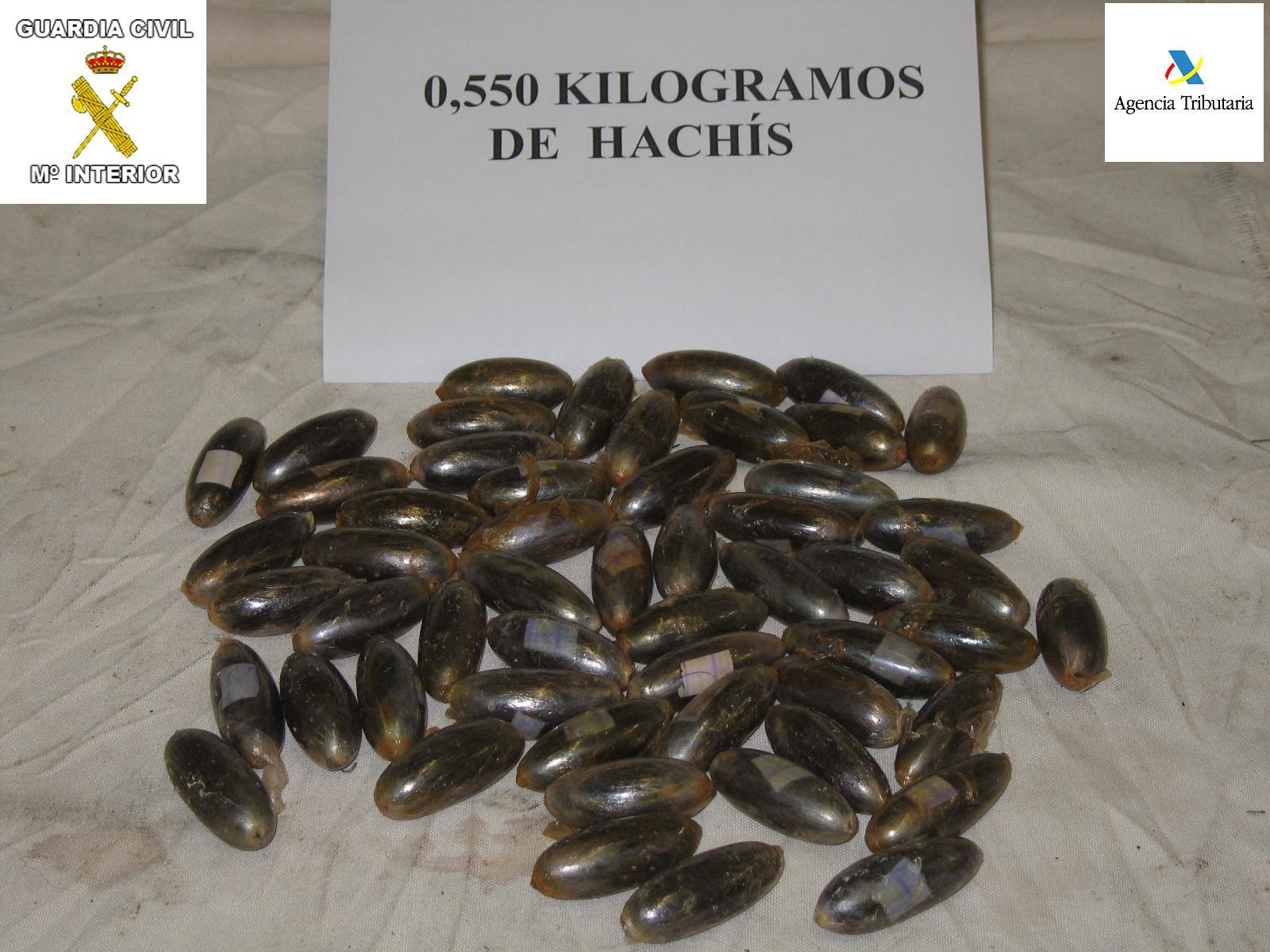 Resultado de imagen de cagar bellotas de hachis