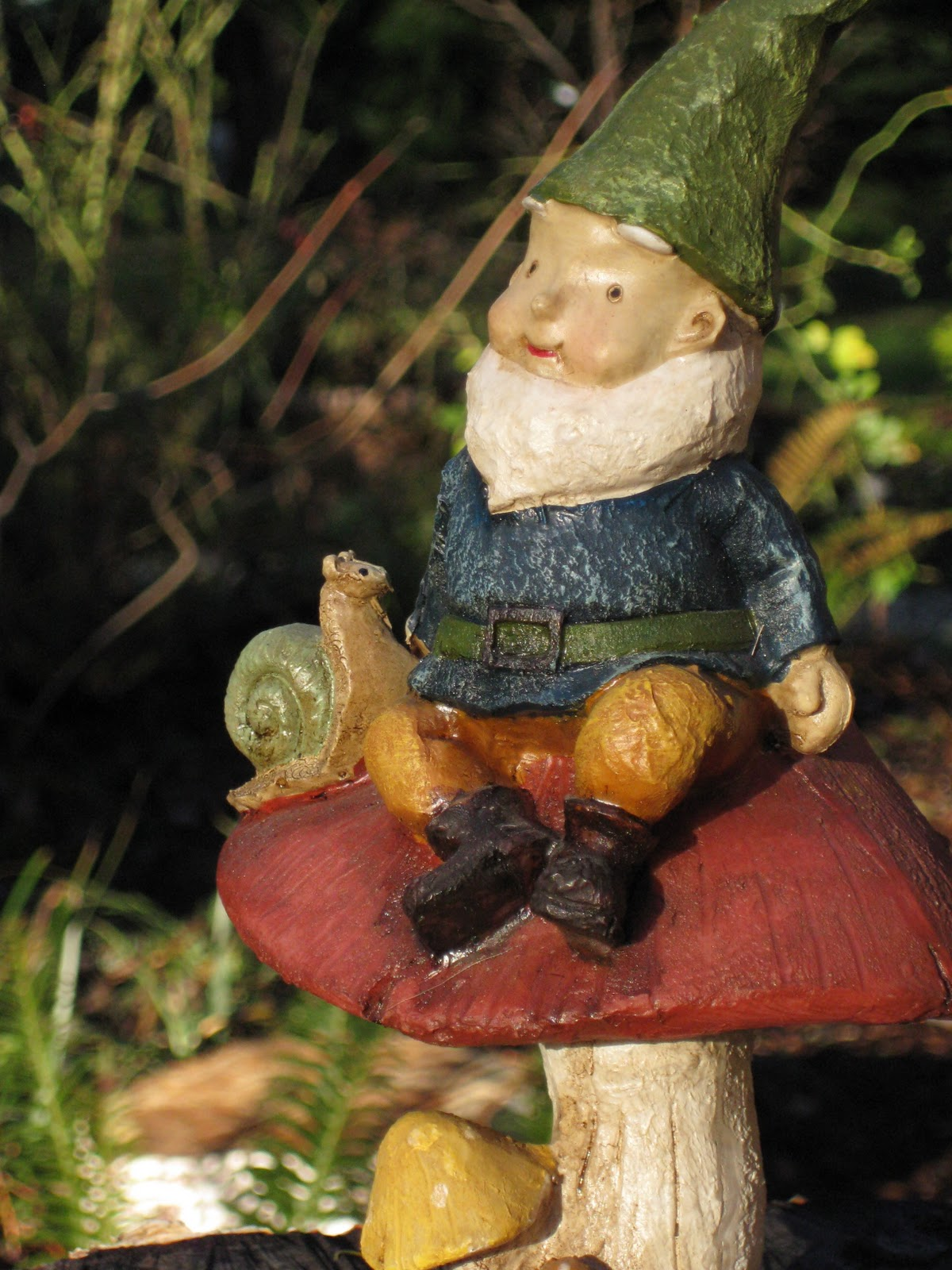 Gnome 4: Gnome Stories At Whimsical Woods: January 2011