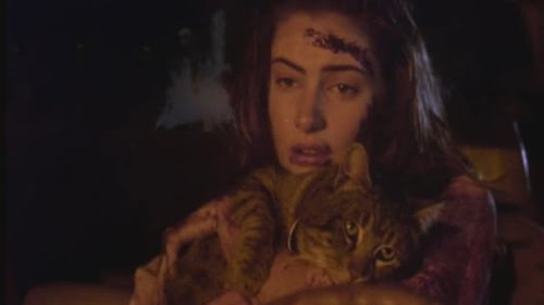 The Cats Meow: The Cats the star: sleepwalkers (1992)