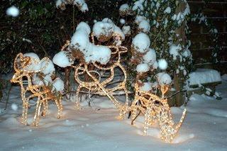 Garten Weihnachten 2010 Mit Deko Beleuchtung Als Free Pics