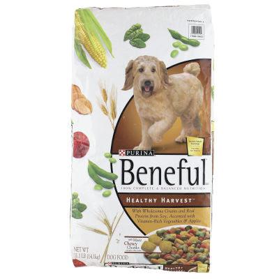 Beneful Dog Food With Talking Dog