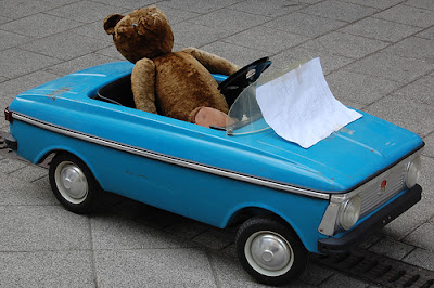 teddy bear in blue toy car