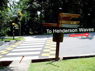 20_TurnRightToHendersonWaves