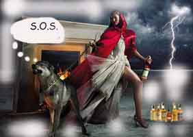Mi Modo De Ver La Vida Caperucita Roja Y El Lobo La Historia