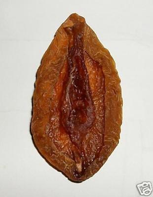 fruta fruit putaria buceta pussy penis cock