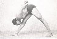 Luz sobre los yoga sutras de patanjali iyengar
