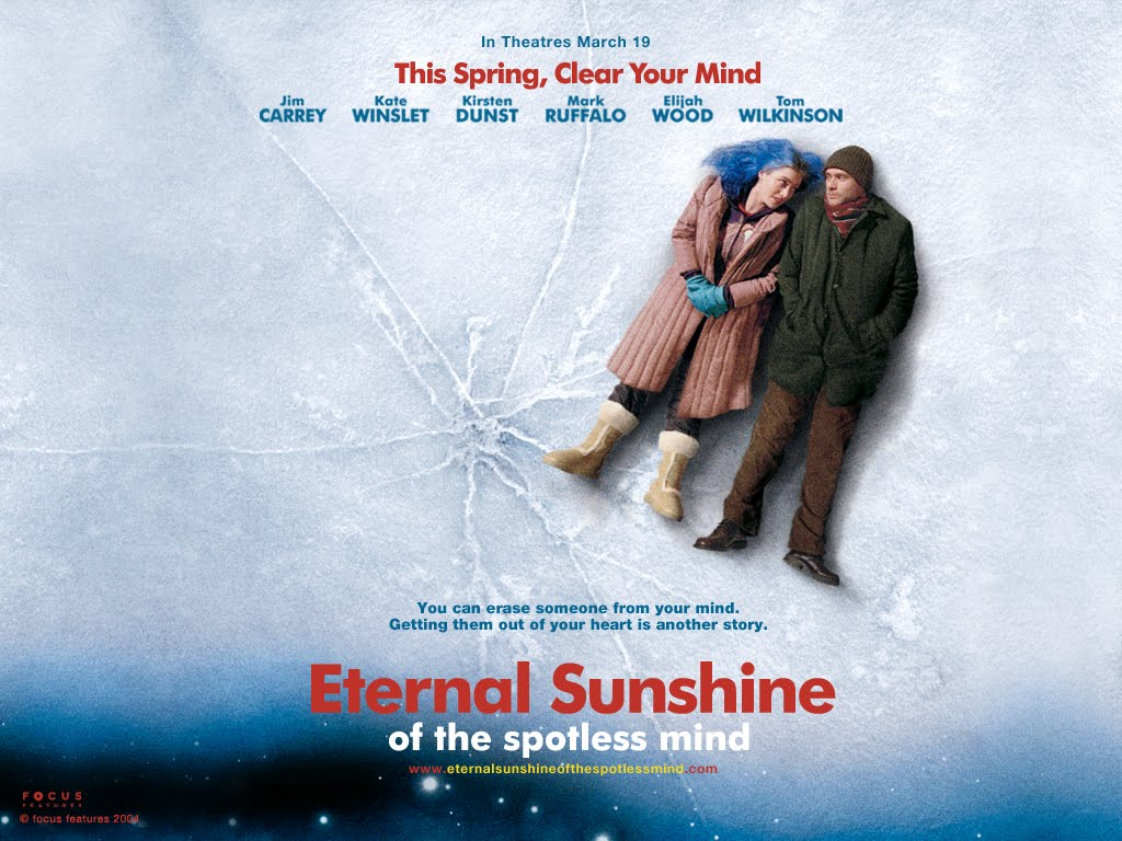 Eternal sunshine of the spotless mind analytical essay