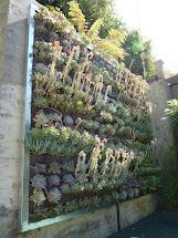 Plants Walls Vertical Garden Systems 3x3 Mini-pocket