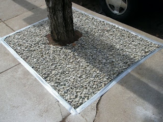 Gravel Lok Contractor Custom Stoneworks Of Baltimore Used To Fill In Tree Grates Along A City Street Maryland