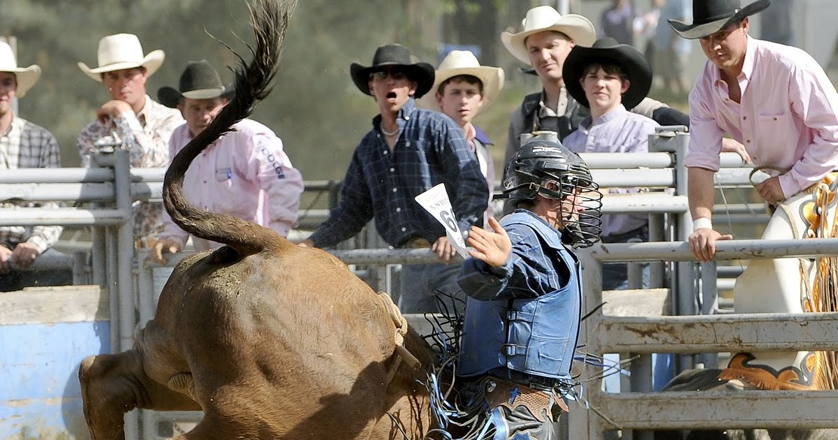 Mother Lode Area Fairs Professional Rodeo Bucks Into The