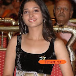 Tamannaah  In Or Out Of Mahesh Project?