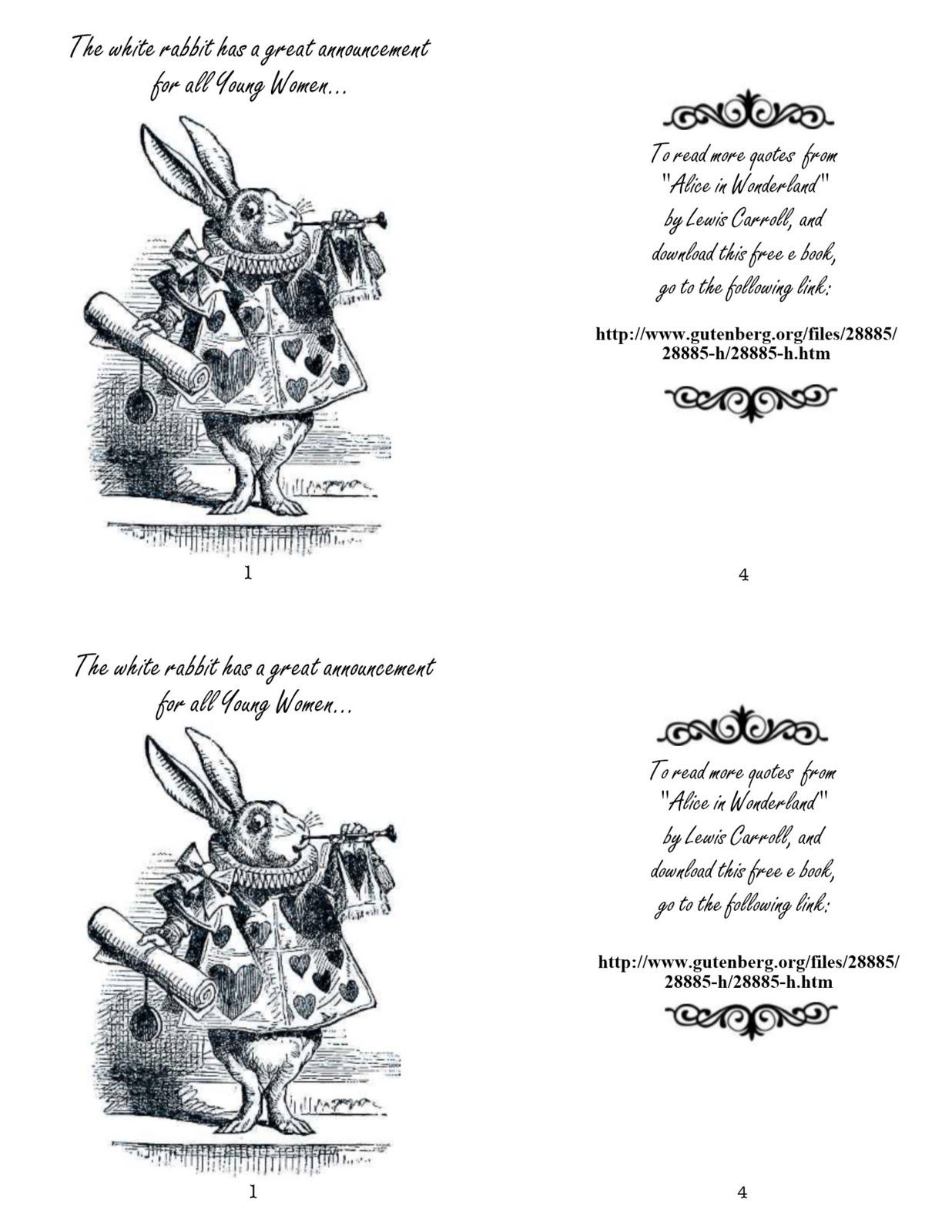 40th Birthday Ideas Alice In Wonderland Invitation