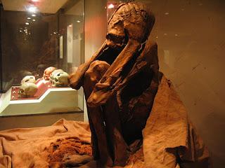 cultura paracas momia museo