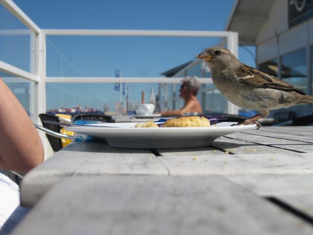 Ein (Geburts)Tag am Meer - oder auch: Wie man nichts zu essen bekommt... [Reise] | Arthurs Tochter kocht von Astrid Paul. Der Blog für Food, Wine, Travel & Love