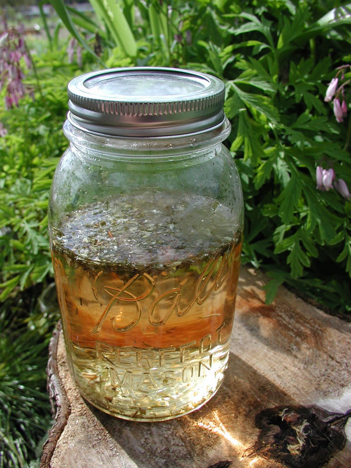 Making May Wine: Mountain Rose Herbs Recipe Contest Entry