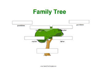 A catholic 39 s bible journey genesis 11 10 32 for 11 generation family tree template
