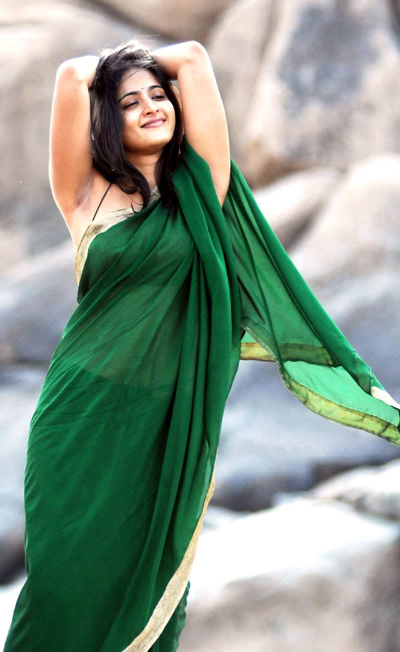 Sexy Bollywood And South Indian Actress Pictures Sexy -3819