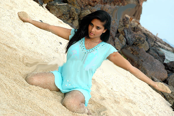 Sexy Bollywood And South Indian Actress Pictures Sexy -9922