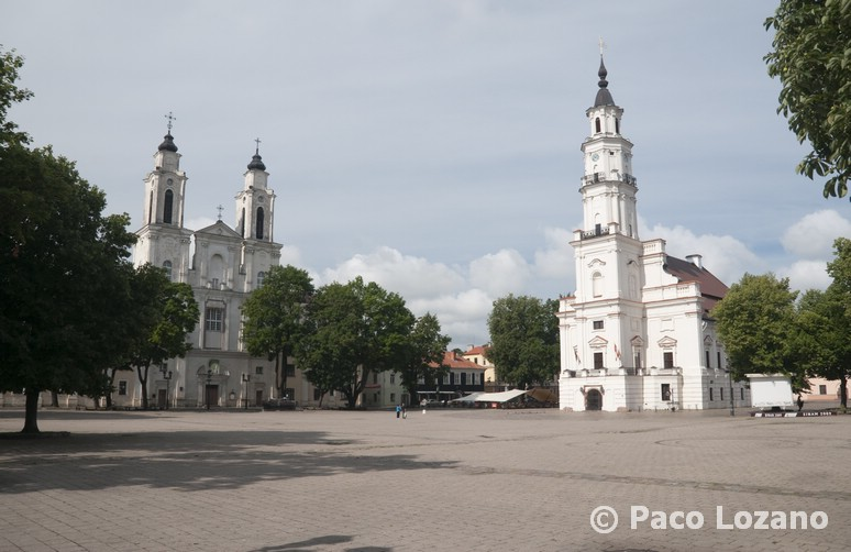 Plaza Mayor de Kaunas