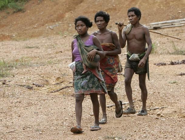 Batek People: Midie Merapoh: Kechau