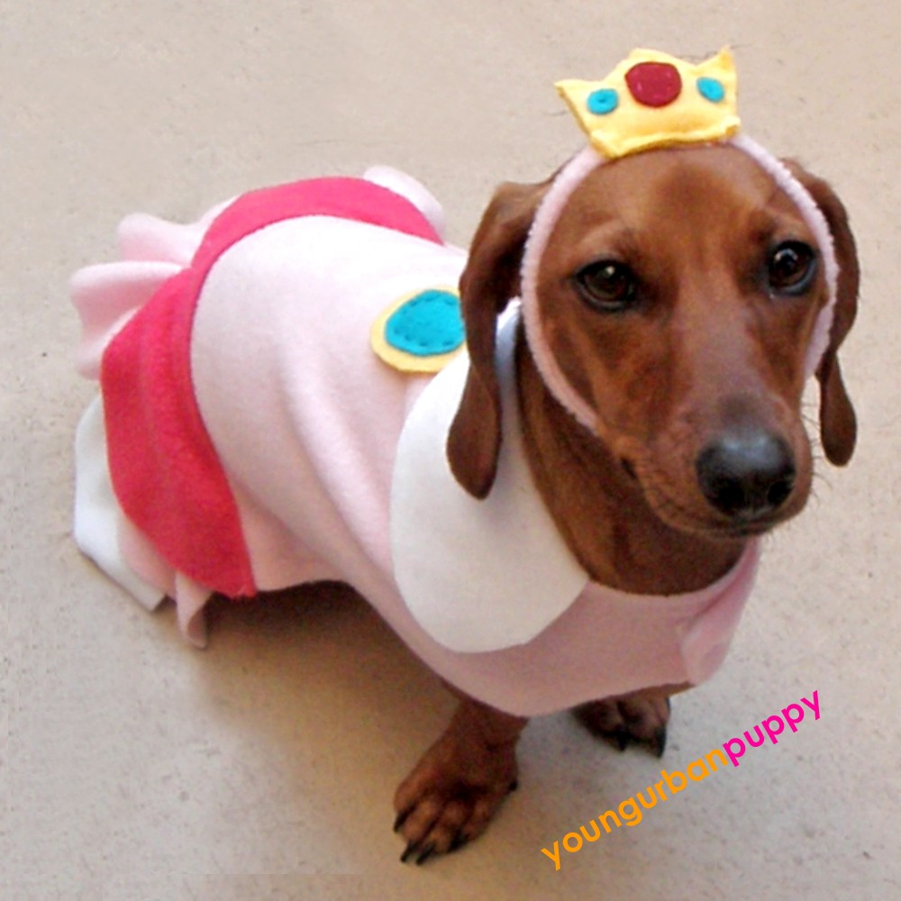 The Zeray Gazette: Super Mario Bros. Dog Costumes