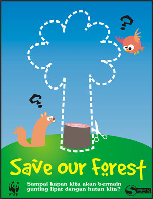 The Fight to Save Our Forests and Wildlife