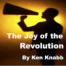 the joy of the revolution by ken knabb
