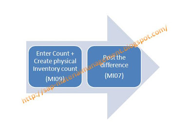 SAP - Material Management: Physical Inventory
