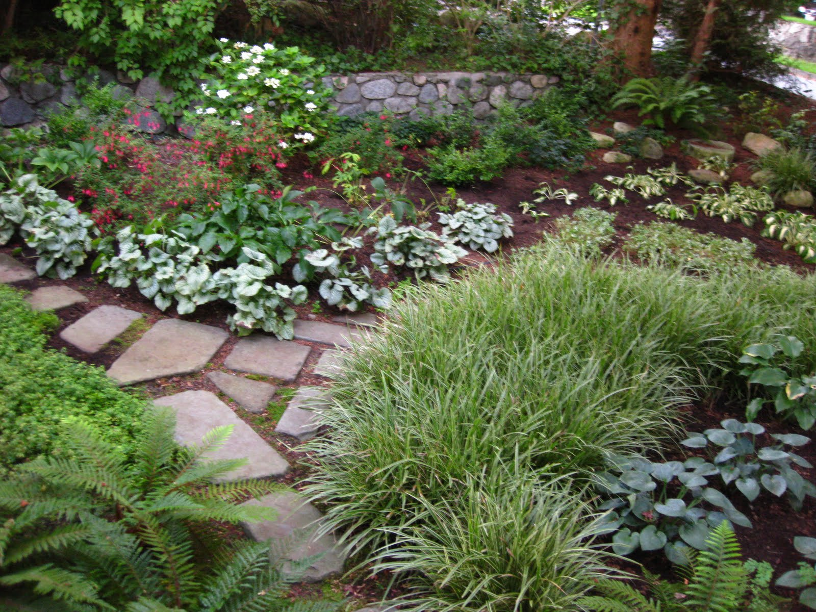 """The Bicycle-Gardening Chronicles...: """"Replace a Shady Lawn ... on Shady Yard Ideas id=16430"""