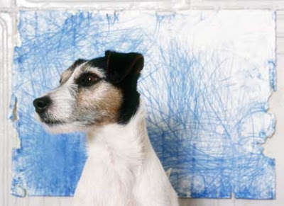 Freaky Stuff - The Dog Who Paints