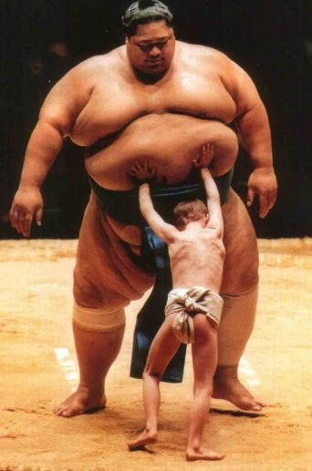 Tao Of Poker Live Sumo Is Rigged