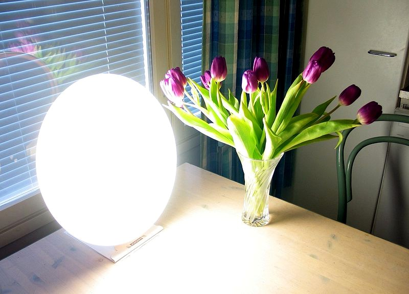 Seasonal Affective Disorder - Bright light therapy ...