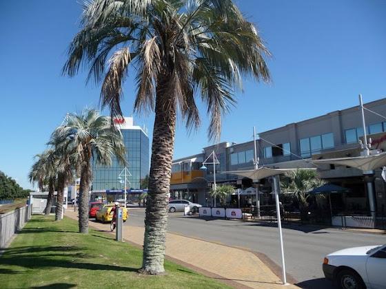 Así luce Tauranga City en Nueva Zelanda