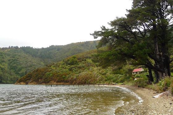 De más lejos así se miraba la casita en Picton