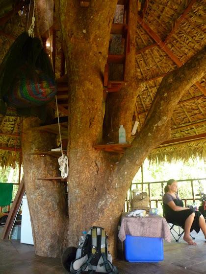 Otra foto dentro de la casa de árbol