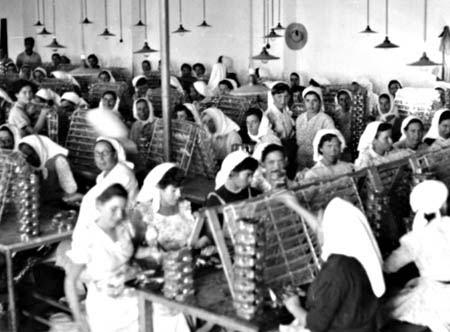 Resultado de imagem para fotos de operárias conserveira de Olhão