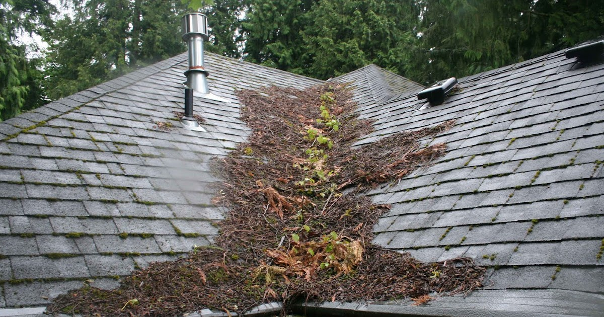 Cascade Powerwash Inc Roof Cleaning And House Washing
