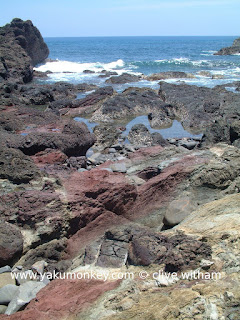 Pillow-shaped Lava beach