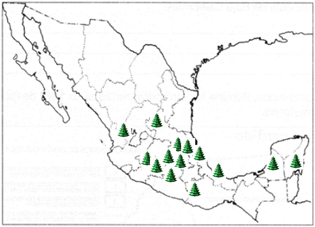 mapa de volcanes en mexico